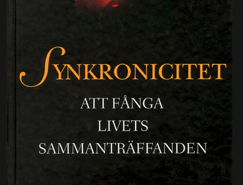 Synkronicitet